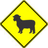W11-17 Sheep Warning