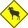 W11-18 Bighorn Sheep Warning